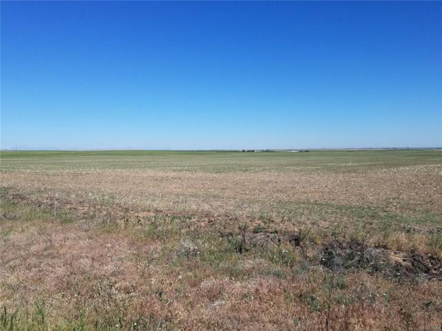 144TH & HARBACK ROAD, Bennett, CO 80102 (#8248474) :: The Pete Cook Home Group