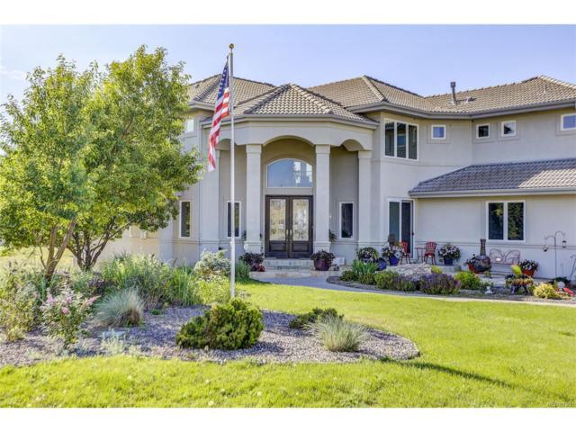 9659 Blanketflower Lane, Parker, CO 80138 (MLS #8250804) :: 8z Real Estate