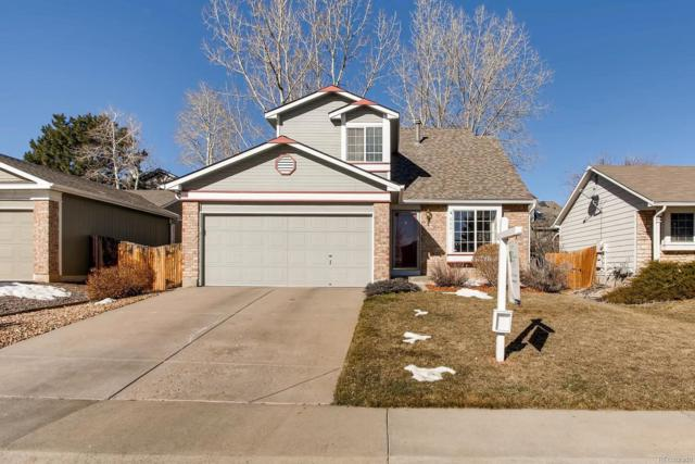 6061 S Robb Way, Littleton, CO 80127 (#8253072) :: The DeGrood Team
