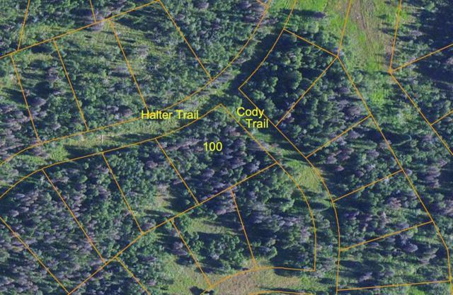 Halter Trail, Oak Creek, CO 80467 (#8253464) :: The DeGrood Team