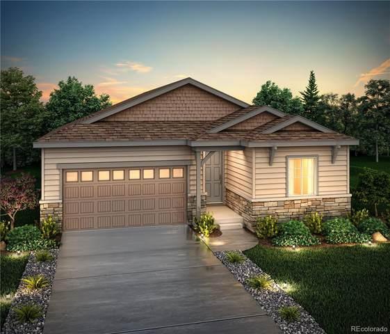 6941 E 119th Avenue, Thornton, CO 80233 (MLS #8256174) :: Kittle Real Estate