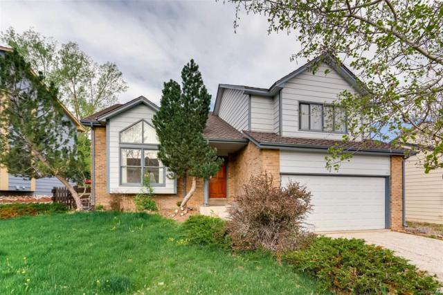 7 Red Locust, Littleton, CO 80127 (#8262735) :: The Pete Cook Home Group