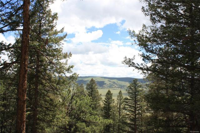 0 Middle Fork Vista, Fairplay, CO 80440 (#8263772) :: The Healey Group