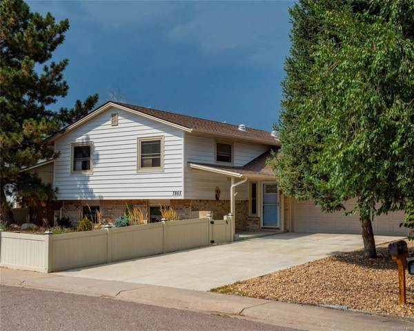 7865 W Ontario Place, Littleton, CO 80128 (MLS #8265663) :: 8z Real Estate