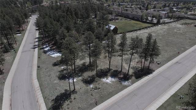 1235 Cottontail Trail, Woodland Park, CO 80863 (MLS #8270200) :: 8z Real Estate