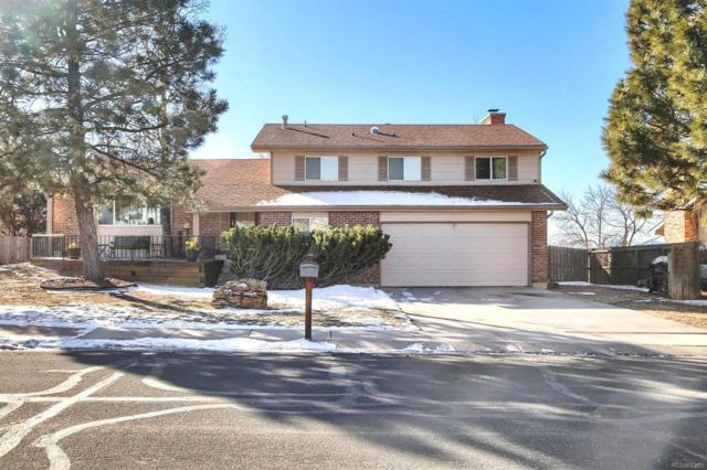 5255 Pony Soldier Drive, Colorado Springs, CO 80917 (MLS #8270903) :: Bliss Realty Group