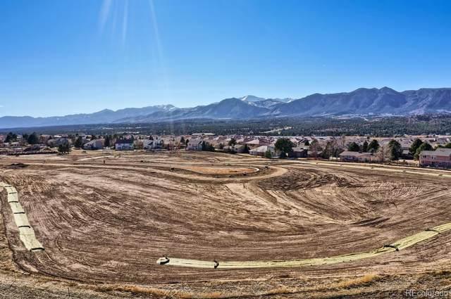 14173 Stone Eagle Place, Colorado Springs, CO 80921 (#8271644) :: Peak Properties Group