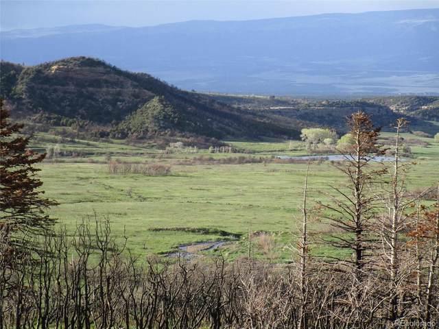 14 Yellowstone Creek, Trinidad, CO 81055 (#8271656) :: Peak Properties Group