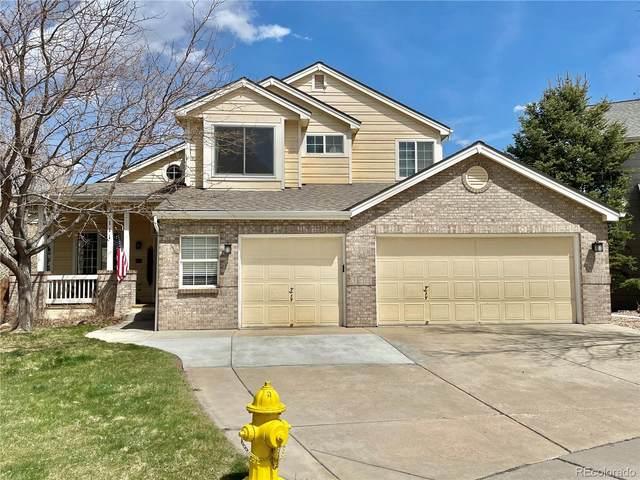 111 Eagle Court, Golden, CO 80403 (#8272150) :: HomeSmart