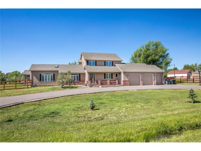 12822 W 75th Place, Arvada, CO 80005 (MLS #8272404) :: 8z Real Estate
