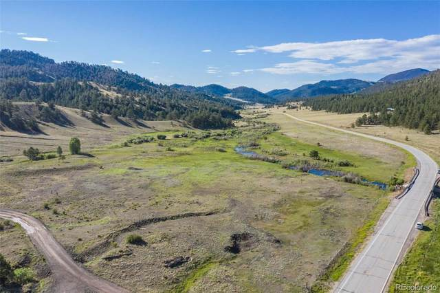 6384 Highway 9, Guffey, CO 80820 (#8278776) :: Mile High Luxury Real Estate