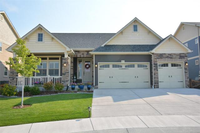 8414 Meadow Wing Circle, Colorado Springs, CO 80927 (#8279060) :: Bring Home Denver