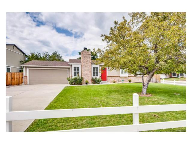 5767 S Oak Street, Littleton, CO 80127 (#8280390) :: The Peak Properties Group