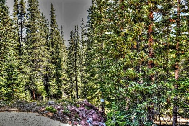 00 Silverheels Circle, Fairplay, CO 80440 (#8281067) :: Structure CO Group