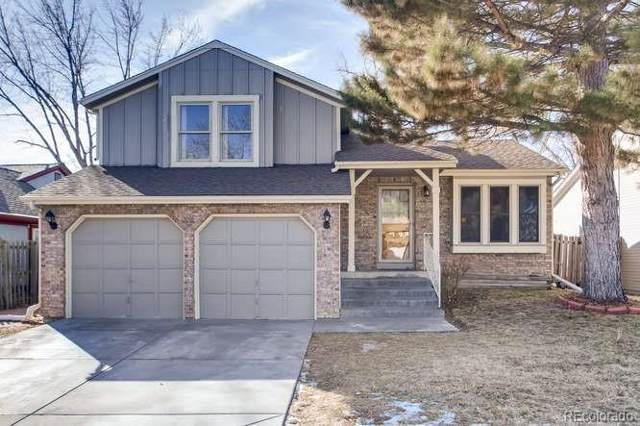9596 W Nichols Place, Littleton, CO 80128 (MLS #8281505) :: 8z Real Estate