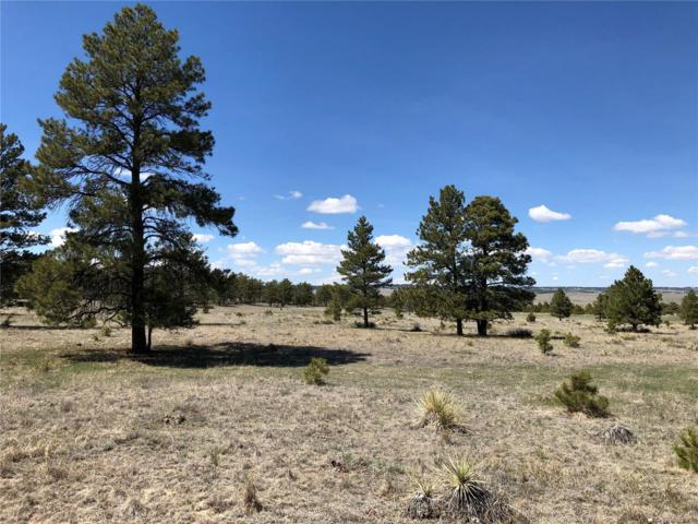 1 County Rd 73, Calhan, CO 80808 (#8284600) :: House Hunters Colorado