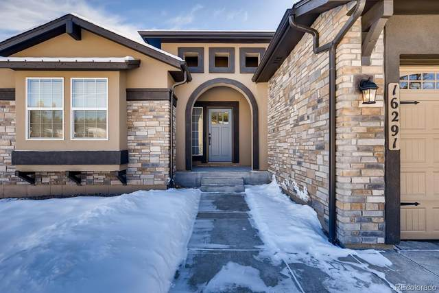 16291 Thunder Cat Way, Monument, CO 80132 (#8285198) :: The DeGrood Team