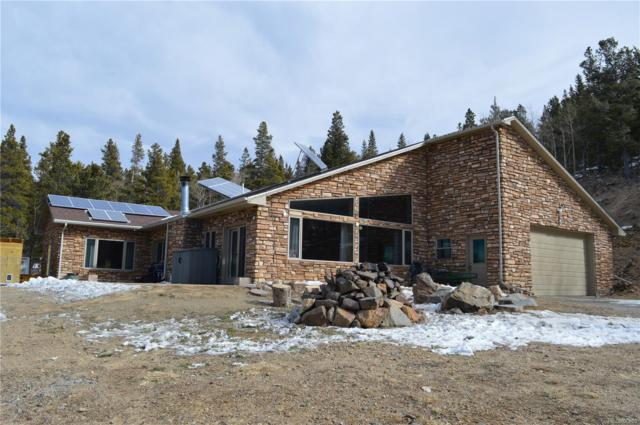 121 Consolidated Ditch Road, Idaho Springs, CO 80452 (#8285585) :: The Peak Properties Group