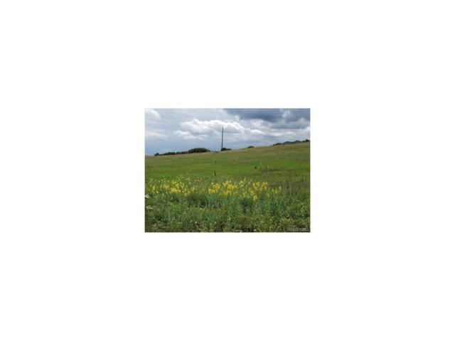 2865 Spaatz Road, Monument, CO 80132 (MLS #8285962) :: 8z Real Estate