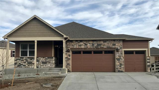5978 Point Rider Circle, Castle Rock, CO 80104 (#8290865) :: The HomeSmiths Team - Keller Williams