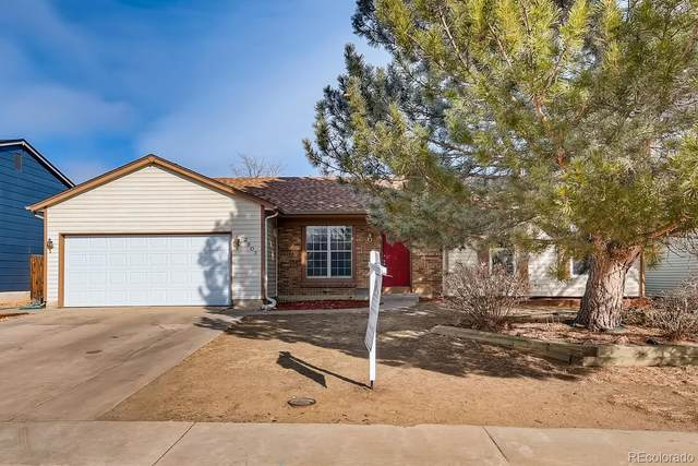 2803 W 99th Circle, Federal Heights, CO 80260 (#8293069) :: The Harling Team @ HomeSmart