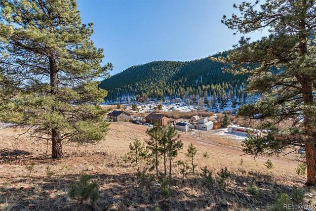 283 Bishop Road, Bailey, CO 80421 (#8293732) :: The DeGrood Team