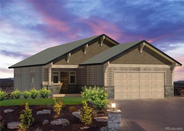981 Dry Creek South Road, Hayden, CO 81639 (MLS #8295817) :: 8z Real Estate