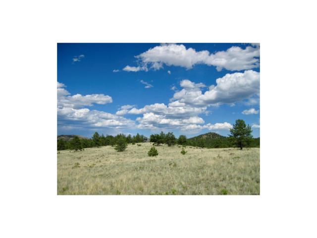 1668 Forest Ser Road 216, Lake George, CO 80827 (MLS #8297691) :: 8z Real Estate