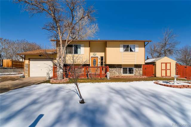 212 Gary Drive, Fort Collins, CO 80525 (MLS #8302089) :: 8z Real Estate