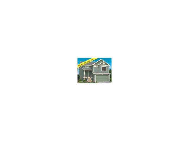 18255 E 52nd Place, Denver, CO 80249 (MLS #8308518) :: 8z Real Estate