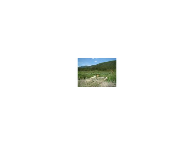 Lot 38 Silver Creek Road, Idaho Springs, CO 80452 (MLS #8312393) :: 8z Real Estate