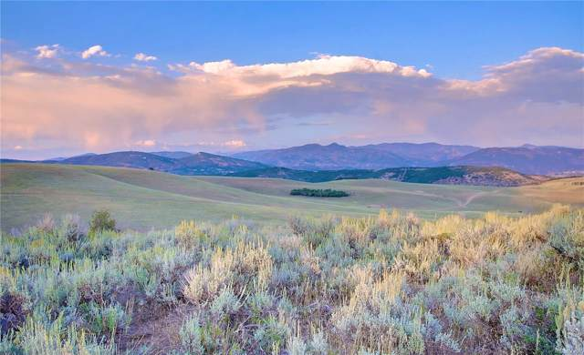 25805 Prairie Pl. Lot 8, Steamboat Springs, CO 80487 (MLS #8312513) :: 8z Real Estate