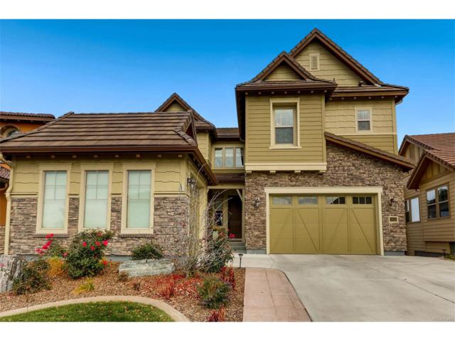 10656 Skydance Drive, Highlands Ranch, CO 80126 (#8312547) :: The Peak Properties Group
