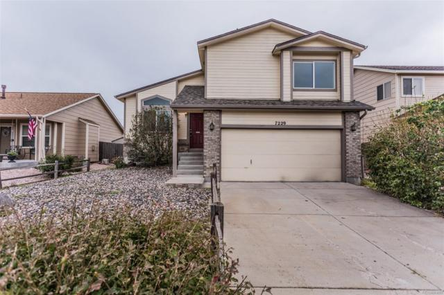 7229 Moss Bluff Court, Fountain, CO 80817 (MLS #8314632) :: 8z Real Estate