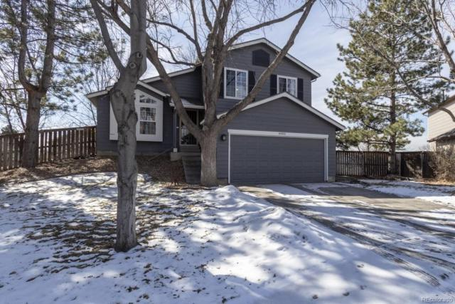 8902 Maribou Court, Highlands Ranch, CO 80130 (#8322524) :: The HomeSmiths Team - Keller Williams