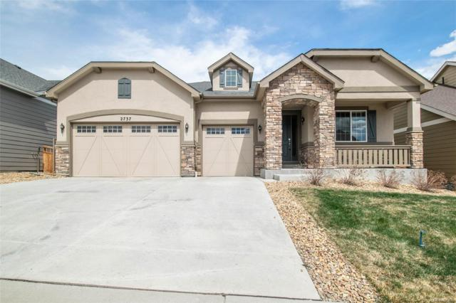2737 Rising Moon Way, Castle Rock, CO 80109 (#8324795) :: The HomeSmiths Team - Keller Williams
