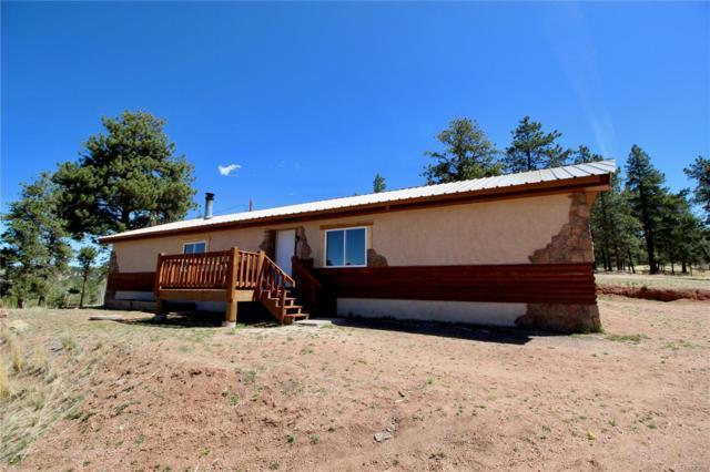 38 Paint Brush, Florissant, CO 80816 (#8325432) :: Wisdom Real Estate