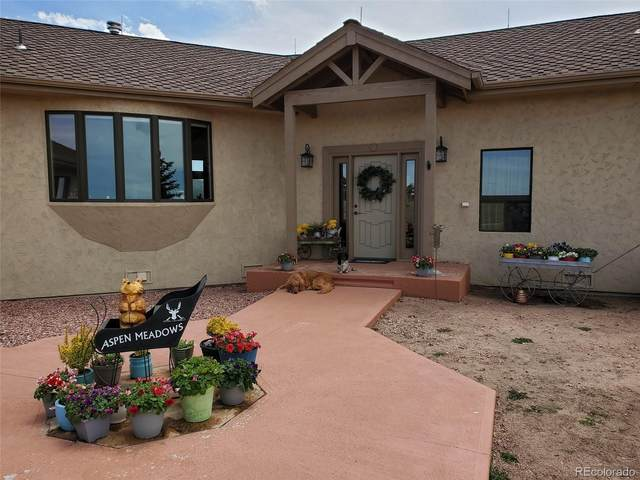 1108 County Road 5, Divide, CO 80814 (MLS #8326360) :: Bliss Realty Group