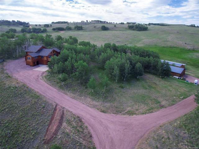 59 Co Road 600, Guffey, CO 80820 (MLS #8327201) :: 8z Real Estate