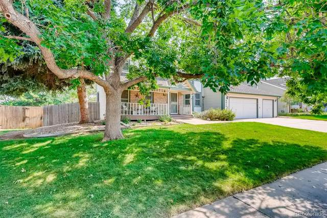8054 S Race Way, Centennial, CO 80122 (#8330993) :: Own-Sweethome Team