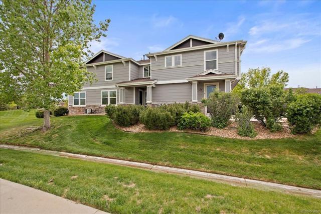 9079 Apache Plume Drive E, Parker, CO 80134 (#8333585) :: Mile High Luxury Real Estate