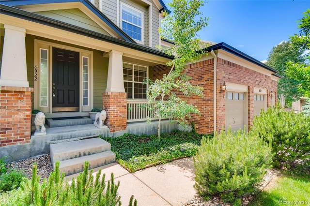 6022 Blue Terrace Place, Castle Pines, CO 80108 (#8336525) :: Bring Home Denver with Keller Williams Downtown Realty LLC