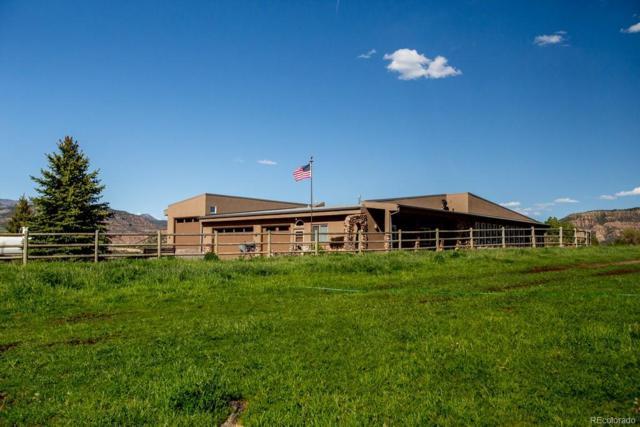 57237 Highway 330, Collbran, CO 81624 (MLS #8337541) :: 8z Real Estate