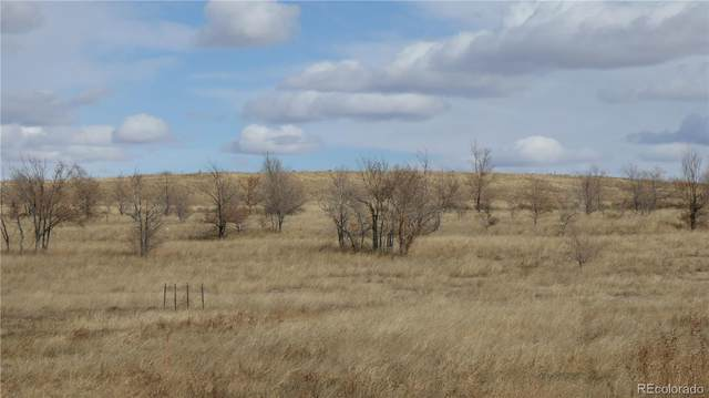 8th St., Deer Trail, CO 80105 (#8338026) :: The Heyl Group at Keller Williams