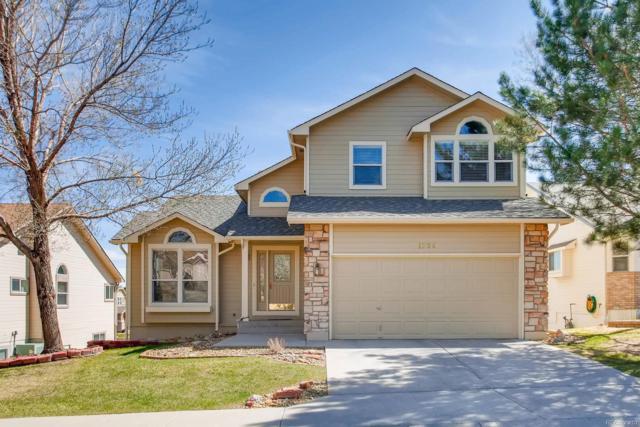 1205 Bison Ridge Drive, Colorado Springs, CO 80919 (MLS #8340081) :: 8z Real Estate