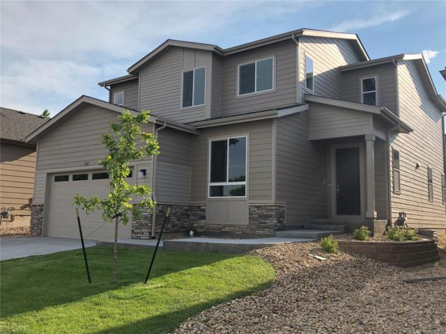 1127 102nd Avenue, Greeley, CO 80634 (#8346052) :: The Griffith Home Team