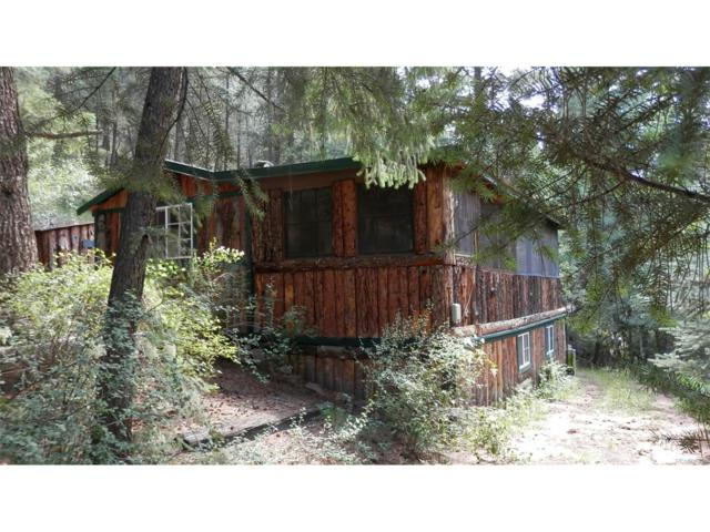 27342 Schuyler Gulch Road, Pine, CO 80470 (MLS #8346505) :: 8z Real Estate