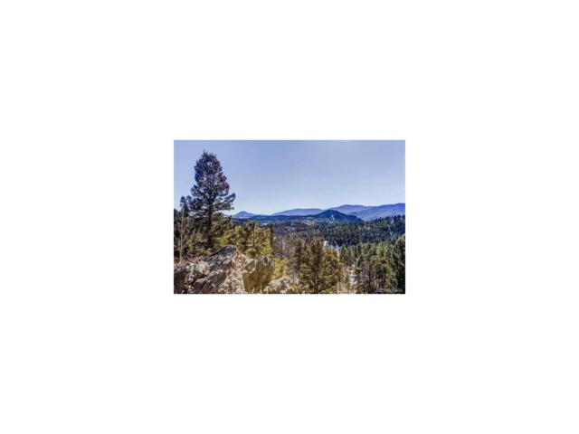 1443 Delwood Drive, Bailey, CO 80421 (MLS #8346676) :: 8z Real Estate