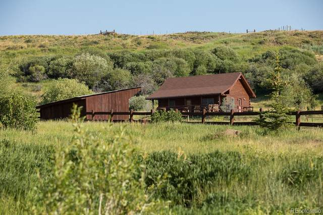 27575 County Road 7C, Yampa, CO 80483 (#8352994) :: Venterra Real Estate LLC