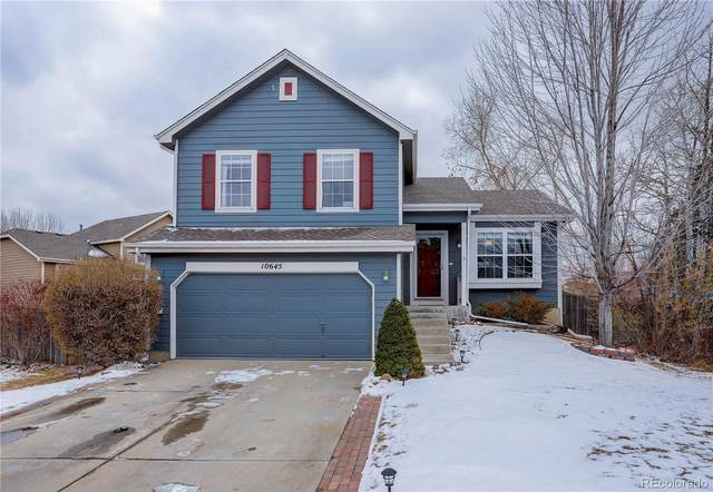 10645 Pommel Court, Parker, CO 80134 (#8356936) :: The Scott Futa Home Team